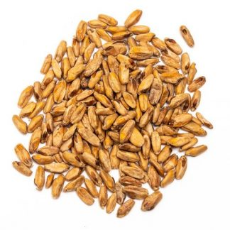 Skagit Valley Triticale Malt