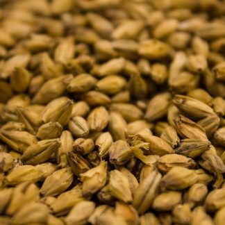 Weyerman Barke Vienna Malt Grains Close Up