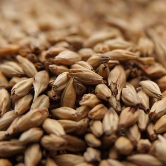 Weyerman CaraAmber Malt Grains Close Up