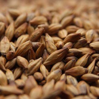 Weyerman CaraMunich 1 Malt Grains Close up