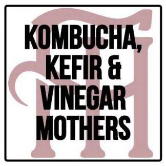 Kombucha Kefir & Vinegar Mothers