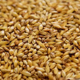 Cara 20 Malt Grains Close Up
